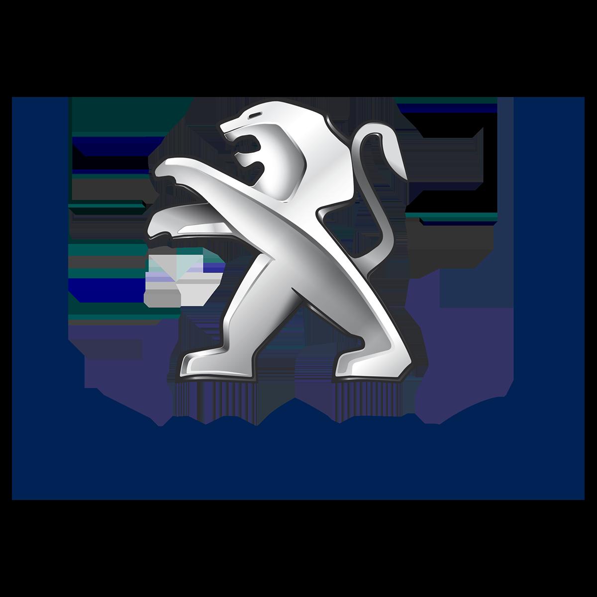 PEUGEOT_fine